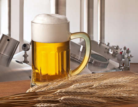 brew house: beer on tap