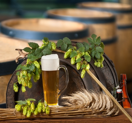 beer and hop cones Stock Photo - 21085211