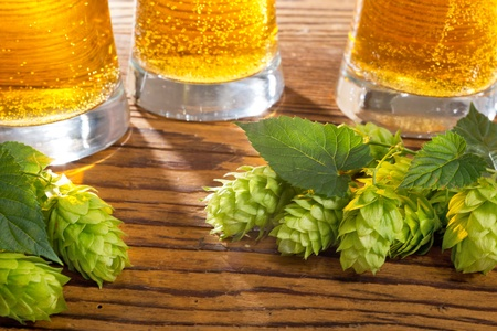 lupulus: still life with beer Stock Photo