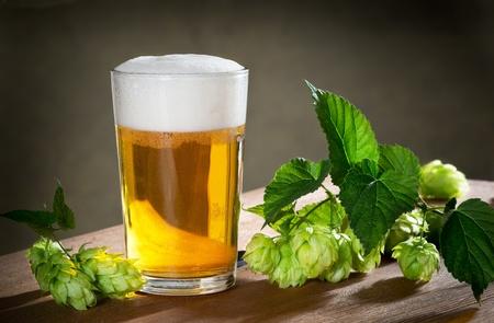 humulus:  beer and hops
