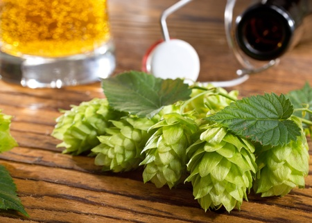 hops and bottle Stock Photo - 22250016