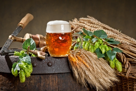 beer Stock Photo - 22633613
