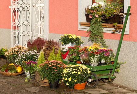 the case before:  florist shop