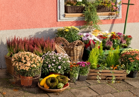outside florist shop Standard-Bild