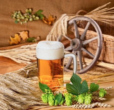 beer production:  beer and raw material for beer production Stock Photo