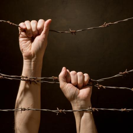 hands behind barbed wire photo