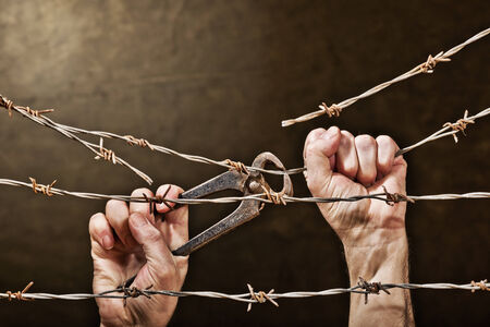 unfreedom: old rusty barbed wire with hand