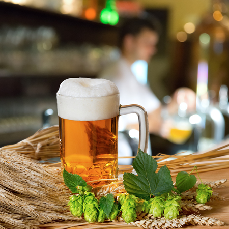 restauration:  beer and raw material for beer production Stock Photo