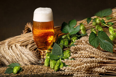 beer production: beer glass and raw material for beer production Stock Photo