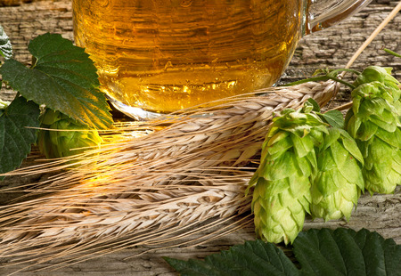 beer production:  raw material for beer production