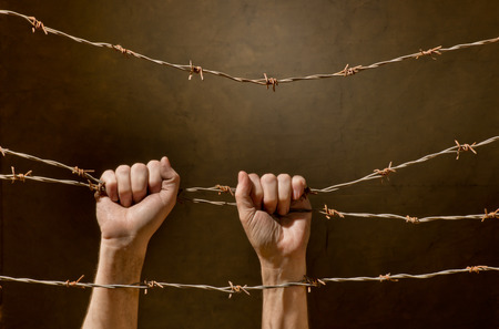 barb wire: hand behind barbed wire