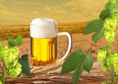 hop cones and beer photo