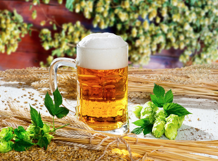beer glass hops and barley