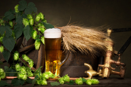 beer production: glass of beer with raw material for beer production
