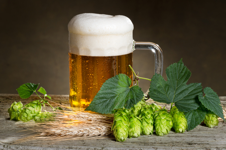 beer production: beer and raw material for beer production