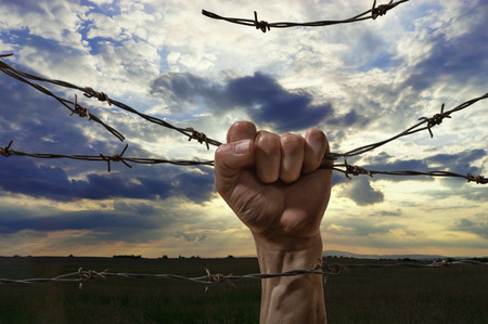 hand behind barbed wire with sunset in the background photo