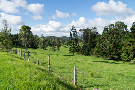 grazing land: Australian hinterland with fence and grazing land Stock Photo