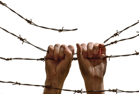 hands hanging on the barbed wire on the white background photo
