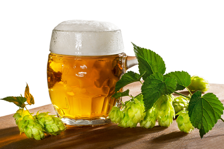 hop cone: beer glass and hops isolated on the white background Stock Photo