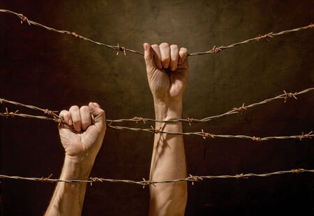 misery: two hands hanging on the barbed wire