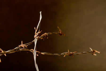 rusty barbed wire on the dark background photo