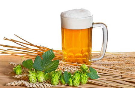 beer and raw material for beer production on the white background photo