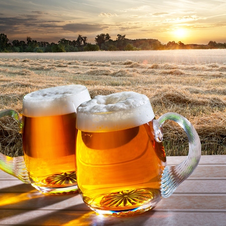 beers: two beers with wheat field  at sunrise Stock Photo