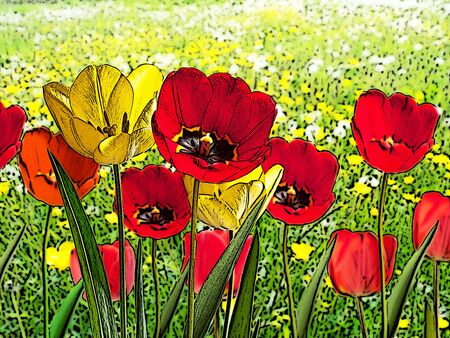 flowerbed: illustration of bed of red and yellow tulips