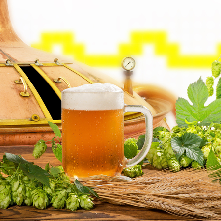 brew house: glass of beer with hops and barley in the brewery Stock Photo