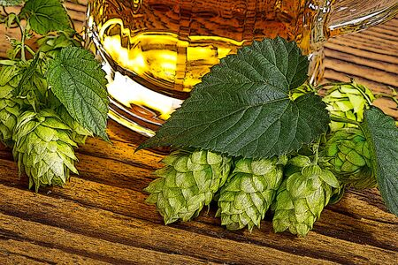 lupulus: illustration of hop cones and beer glass, generated from Photoshop Stock Photo