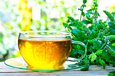 glass of peppermint tea with peppermint plant  on the table Reklamní fotografie - 54993412