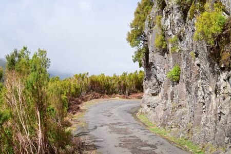 blacktop: Country road in Madeira island, Portugal