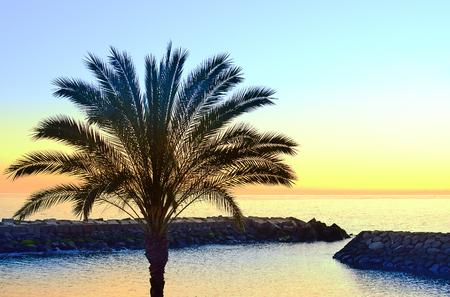 bulwark: Sunset on beach in Madeira island, Portugal