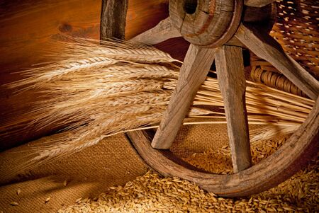 vintage still life with barley and old wheel