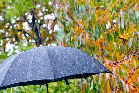 be wet: detail of black umbrella in the rain