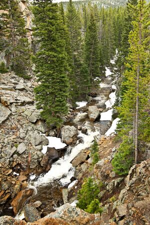 pine creek: A wild creek in Rocky mountains in Colorado