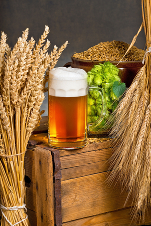 Glass of beer with raw material for beer production