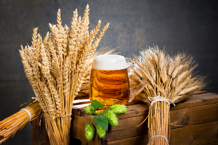 raw material: glass of beer and raw material for beer production Stock Photo