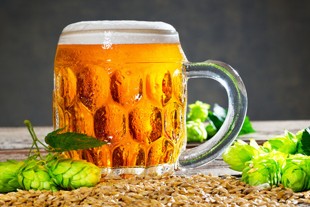 glass of beer with hop cones on the wooden desk Stock Photo