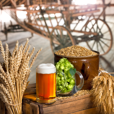 materia prima: Still Life with glass of beer and raw material for beer production in interior