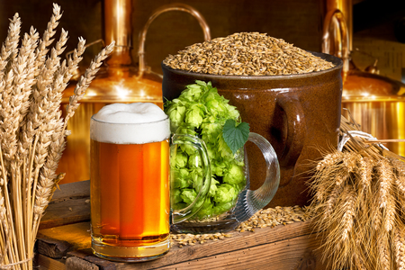 Beer glass with hops and barley in the brewery Stock Photo