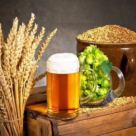 barley head: Glass of beer with raw material for beer production