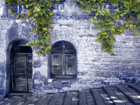 Old mysterious wall with grapes plant