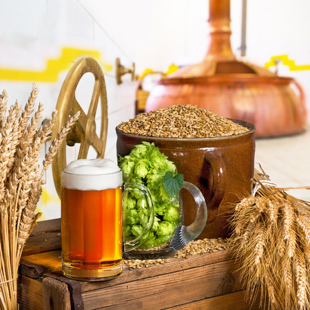 Beer Glass and Raw Material for Beer Production in the Brewery Stock Photo