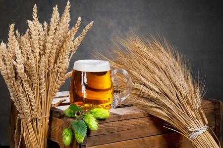 glass of beer and raw material for beer production 写真素材