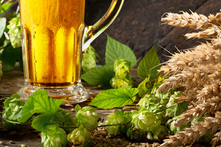 Detail of Beer Glass with Hops and Barley Stock Photo