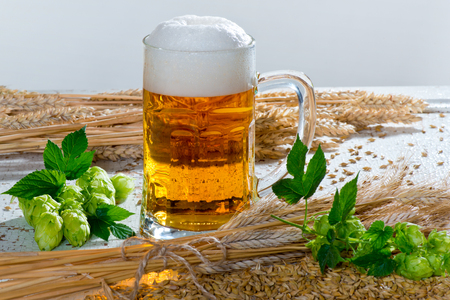 Beer Glass and Raw Material for Beer Production