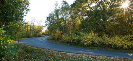Autumn landscape with road in the sunny day.