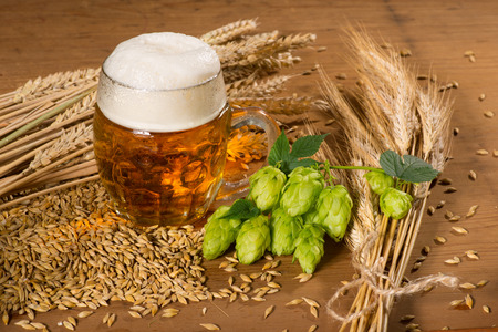 Beer glass and raw material for beer production Stockfoto
