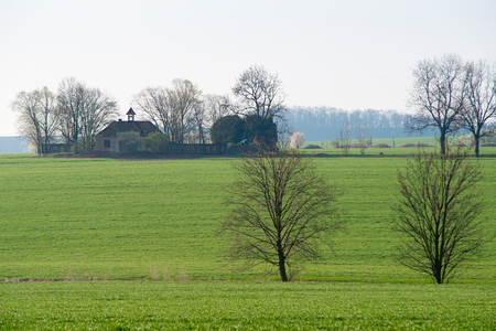 Meadow with trees and a old church in the springtime